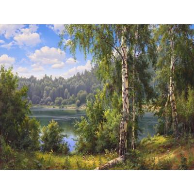 Картина по номерам 40х50 Прищепа. Лесное озеро (28 цветов)